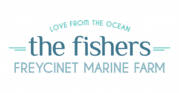 the fishers logo